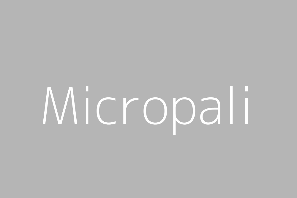 fff&text=Micropali